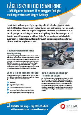 Produktblad Fågelskydd & sanering Specialrengöringar Sverige.