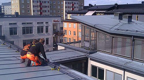 Sanering efter fåglar Specialrengöringar Sverige.