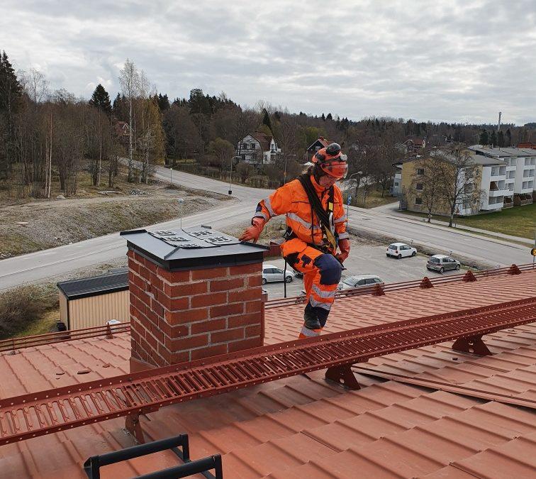 Måsutmaningar över hela Sverige